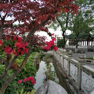 鸿恩寺森林公园旅游景点攻略图