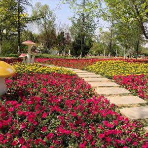 济南植物园旅游景点攻略图