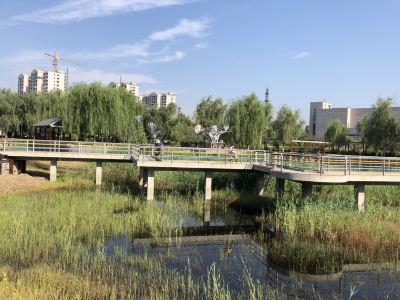 任丘華北油田礦山公園