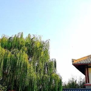 衡水湖闾里古镇旅游景点攻略图