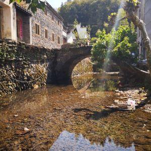 芹川村旅游景点攻略图