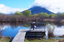 新西兰野生之旅——记一场独自跨越1000公里的旅行