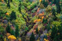 深秋的香格里拉,美得令人窒息