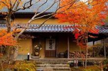 不输箱根的温泉,堪比京都绝美秋景,上海直飞1h就能在日本乡间踏秋!