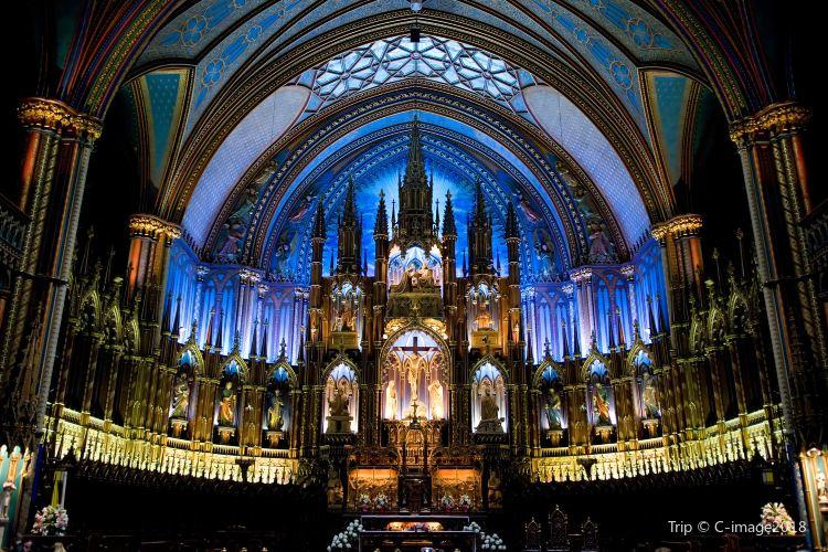 蒙特利爾聖母大教堂3