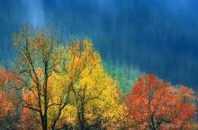 西安周末去哪儿玩:西安周边的彩林、雾凇、花海……秋末值得去旅行