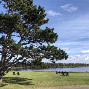 王子岛公园旅游景点攻略图