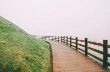 #元旦去哪玩#浙江最美的高山牧场