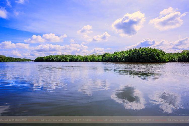 Borneo Kellybays2