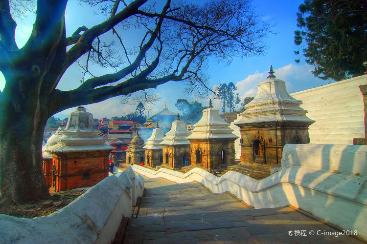 Pashupatinath Temple1