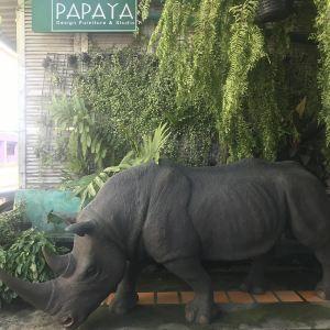 木瓜复古店旅游景点攻略图