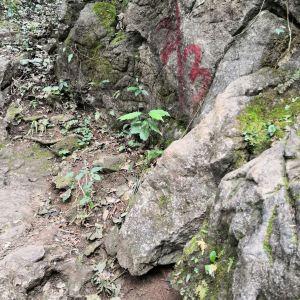 老寨山旅游景点攻略图