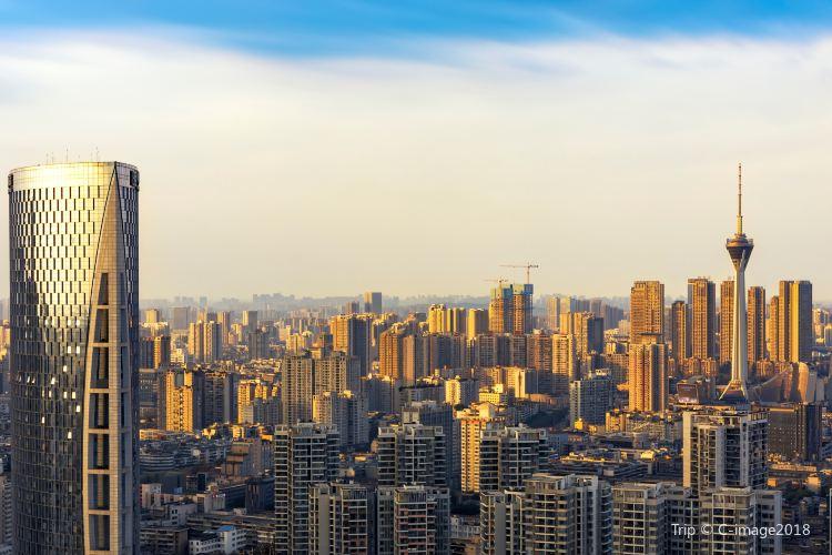 Tianfu Panda Tower4