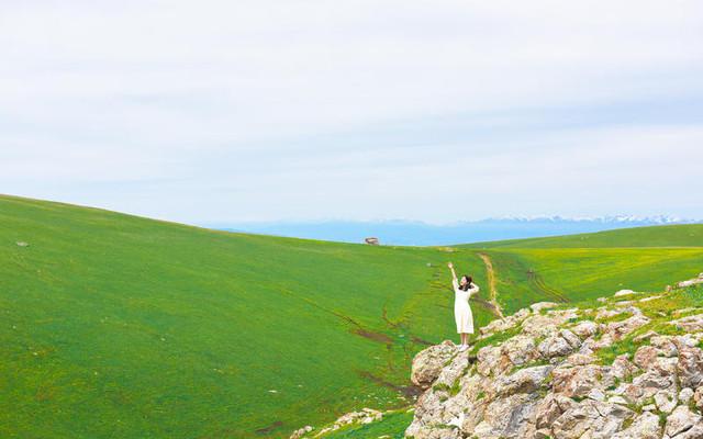 新疆奇遇记 行走于天空与草原之上,一望无际的是自由~