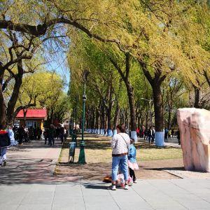 斯大林公园旅游景点攻略图