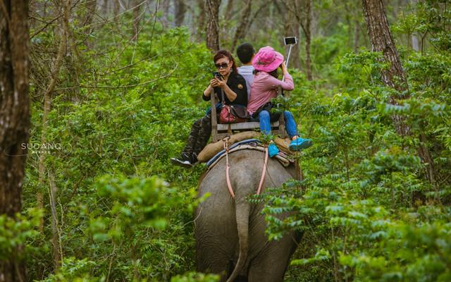 奇特旺之旅,探索原始丛林最原始的古老村庄,发现不一样的尼泊尔风光