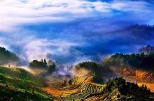 金色梯田——9月紫鹊界风光摄影、写生、观光攻略
