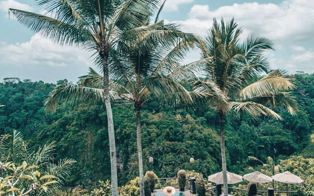 巴厘岛乌布无边泳池 | 人均最低200+/晚就能拿下!