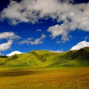 若尔盖花湖旅游景点攻略图