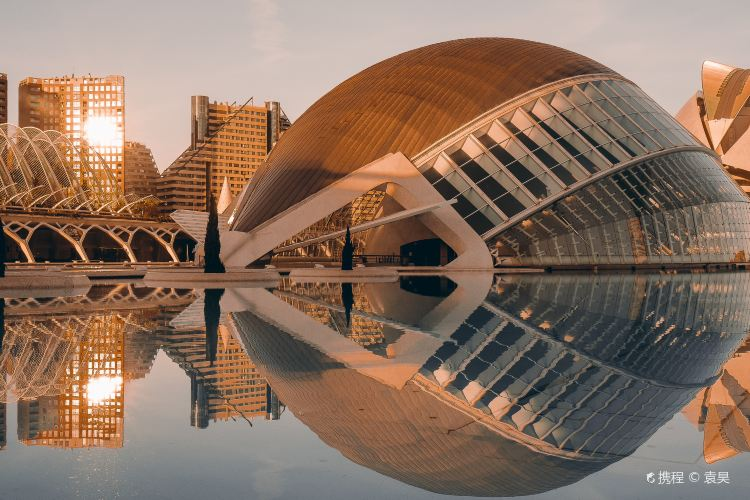 City of Arts and Sciences1
