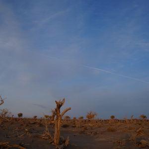 弱水金沙湾旅游景点攻略图