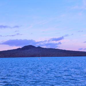 怀希基岛旅游景点攻略图
