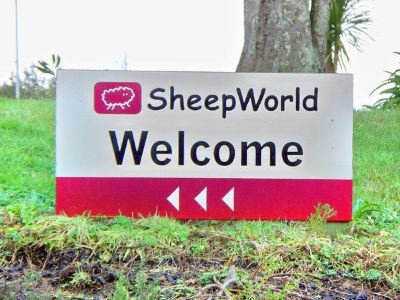 Sheep World