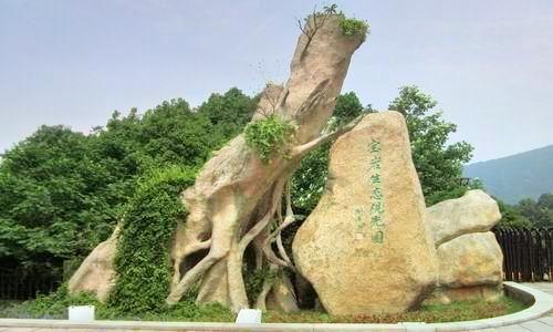 Baoyan Ecological Sightseeing Garden
