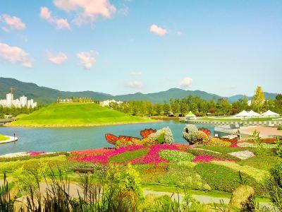 Suncheon Bay Cyber Ecological Park