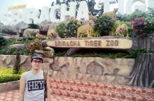 芭提雅-龙虎园