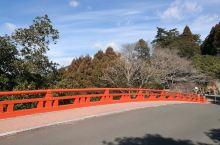 山林中的雾岛神宫