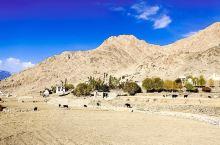 拉达克明珠,静谧祥和的利吉尔村