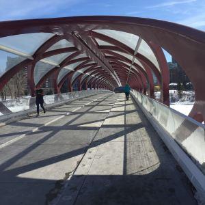 Peace Bridge旅游景点攻略图
