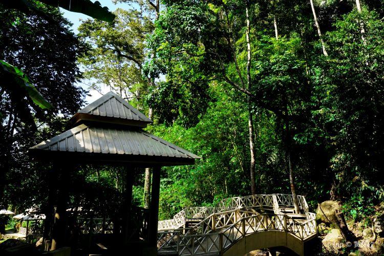 Durian Perangin Waterfall2