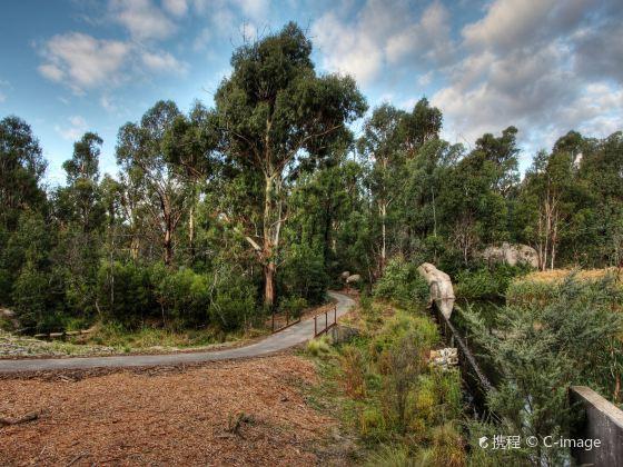 特賓比拉自然保護區