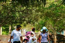 斯里兰卡|狮子岩下遇到最纯粹的笑容