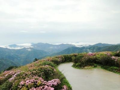 Yangmingshan National Forest Park