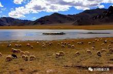 噶尔(狮泉河)-日土自驾游旅游攻略