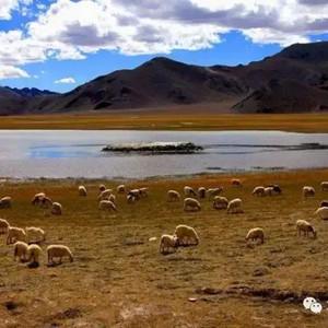 噶尔游记图文-噶尔(狮泉河)-日土自驾游旅游攻略