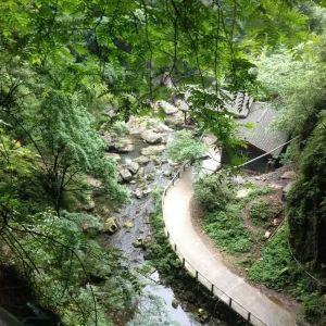 华蓥山大峡谷旅游景点攻略图