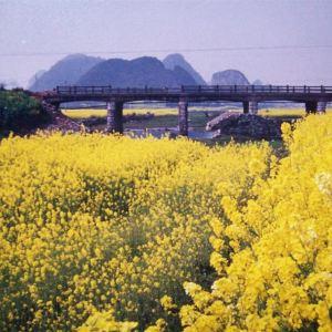 思南县旅游景点攻略图
