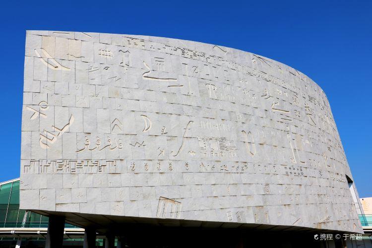 알렉산드리아 도서관