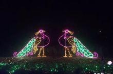 杭州湾海上花田灯光节