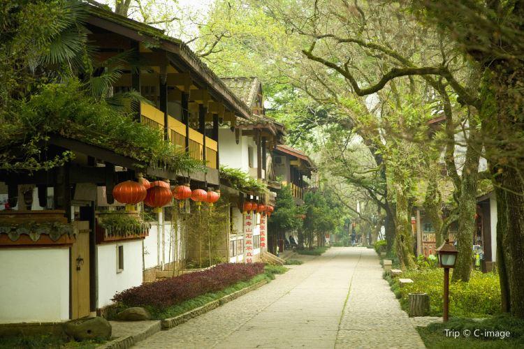 Wuyi Palace1