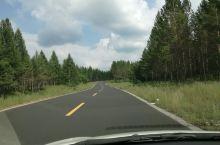 避暑圣地,塞罕坝国家森林公园!