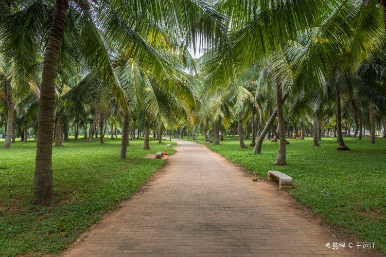 바이사먼 공원3
