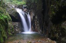 南岭国家森林公园的绿水青山