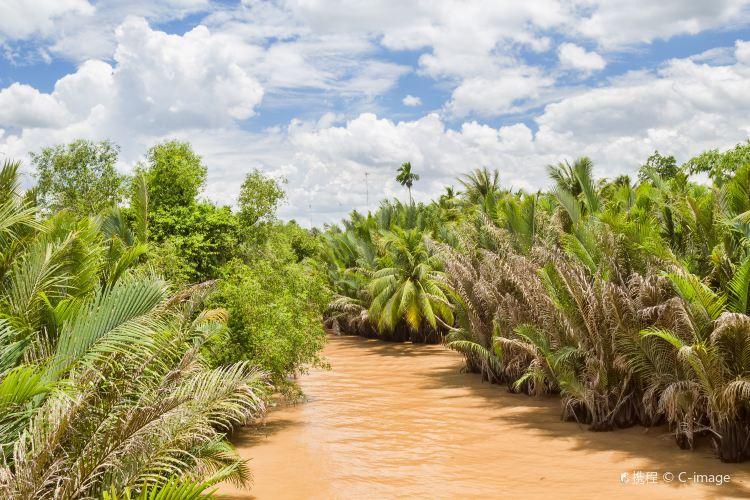 Mekong River Delta1