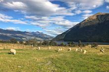 新西兰的天堂镇真的是天堂吗?