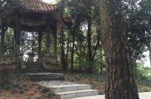 毛主席父母墓